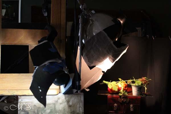 Ott lighting with masking for still life oil painting